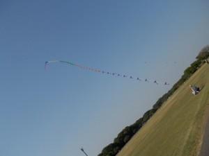 とってもよく揚がってる連凧