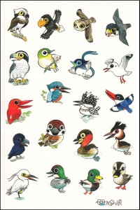 野鳥20種のシール